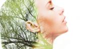Grazie alla combinazione di tre polifenoli perfettamente bilanciati, unisce alte proprietà antiossidanti con un'eccellente attività lenitiva per le pelli sensibili. - See more at: http://demo.newvisibility.it/sinerga2/it/news/leniphenol-il-nuovo-ingrediente-attivo-creato-da-sinerga-con-proprieta-antiossidanti-e-lenitive.